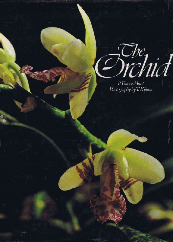 THE ORCHID. P. Francis Hunt.