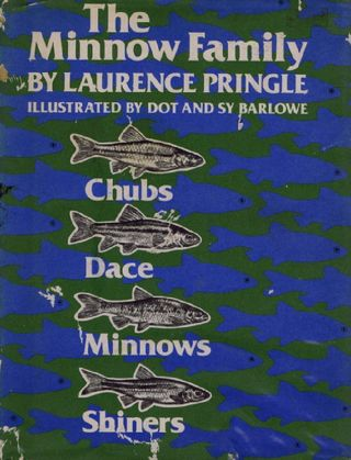 THE MINNOW FAMILY. Laurence Pringle.