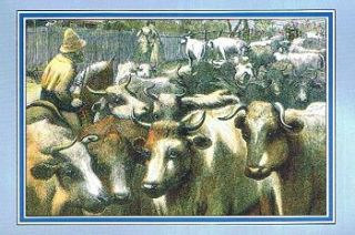 DRIVING CATTLE TO THE MELBOURNE MARKET. The Illustrated Australian News, circa 1870. Australiana