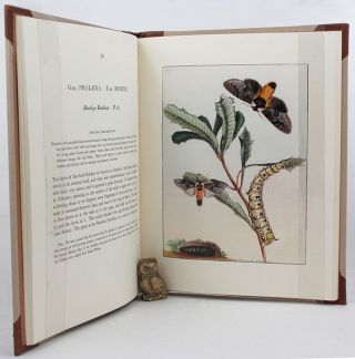 PRODROMUS ENTOMOLOGY. John William Lewin