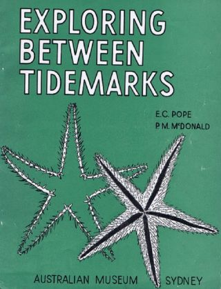 EXPLORING BETWEEN TIDEMARKS. Elizabeth C. Pope, Patricia M. McDonald