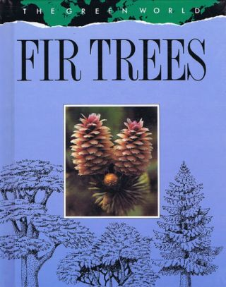 FIR TREES. Theresa Greenaway